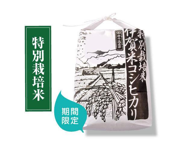 【お得価格】贈るお米 特別栽培米 伊賀米コシヒカリ白米3kg(送料込み )
