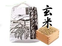 伊賀米コシヒカリ 玄米 3kg
