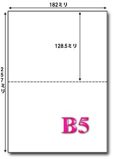 B5 マイクロミシン目入り 2分割
