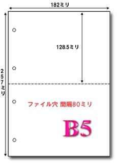 B5 マイクロミシン目入り 2分割4穴