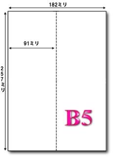 B5 マイクロミシン目入り たて2分割