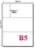 B5 マイクロミシン目入り 3分割