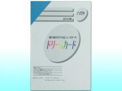 ドリームカード ニューカラーR(TYPE-A)/はがきサイズ/うすあお 200枚