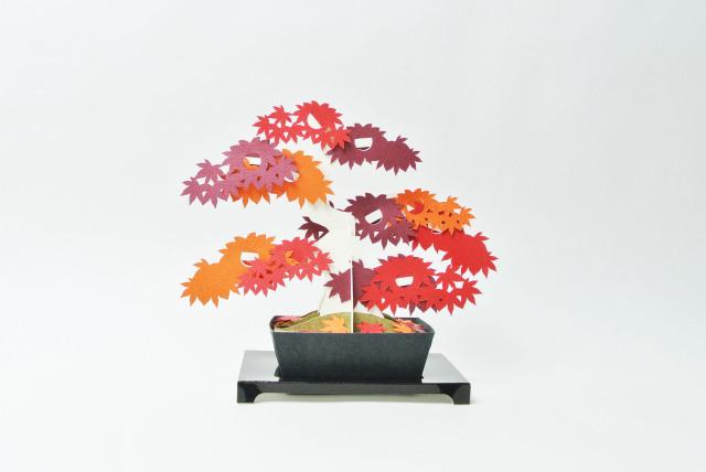 kami-bonsai 紅葉