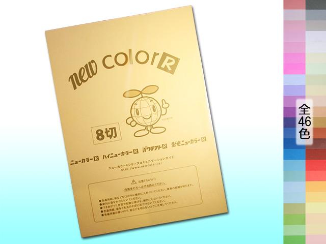 ニューカラーR / 8切 (TYPE-A)