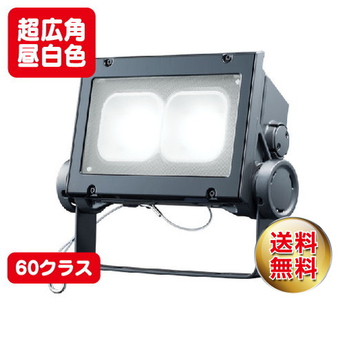 岩崎電気 ecf6040sw/nsan8/dg led投光器 レディオックフラッドネオ 60クラス 超広角タイプ 昼白色タイプ