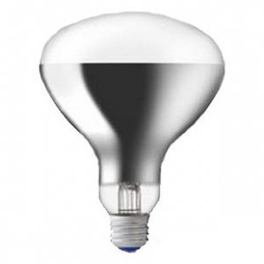 RF110V270W/屋内投光用アイランプ/300W形/散光形HIDランプ