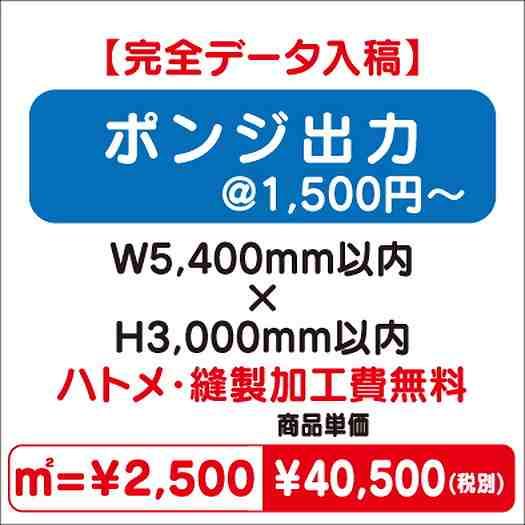 ポンジ出力/ハトメ・縫製加工費無料/W5,400×H3,000