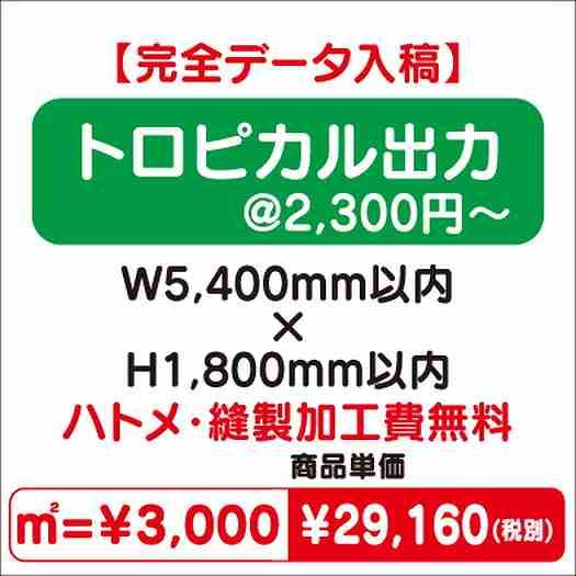 トロピカル出力/ハトメ・縫製加工費無料/W5,400×H1,800