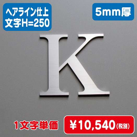 ステンレス切文字/ヘアライン仕上げ/5mm厚/文字H=250