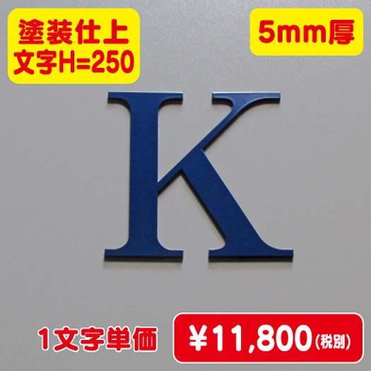 ステンレス切文字/塗装仕上げ/5mm厚/文字H=250
