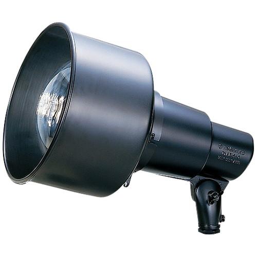 岩崎電気,S00F/BK-L14,投光器,S形アイランプホルダ,フード付,アーム取付タイプ