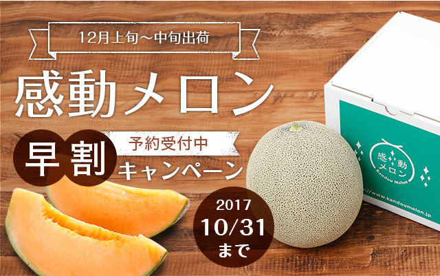 【限定品】感動メロン(赤肉)1.5kg以上・1玉 美味しい完熟・糖度16度<早割キャンペーン10月31日まで>