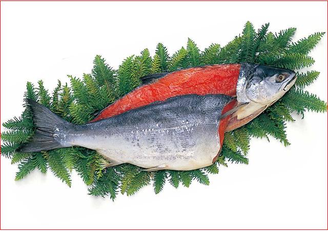 2019-42 【甘口】紅鮭1尾(ロシア産・約2.3kg)