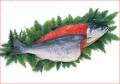 2018-105 【甘口】紅鮭1尾(ロシア産・2.3kg〜)