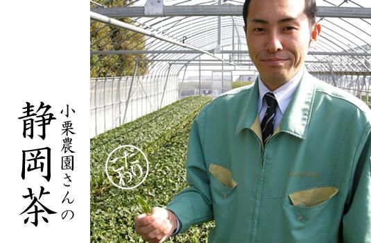 小栗農園さんの静岡茶