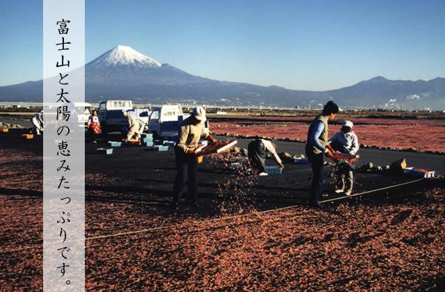 富士山と太陽の恵みたっぷりです。