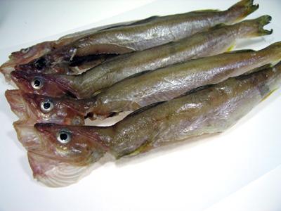 氷下魚の一夜干し