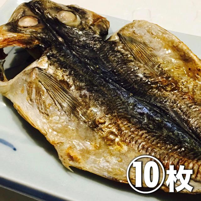 (全国発送)ハイパー干物クリエイター藤間さんの干物 どんちっちアジ(小)10枚