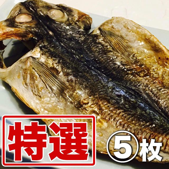 (全国発送)ハイパー干物クリエイター藤間さんの干物 特選アジ(大)5枚