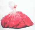 赤かぶの千枚漬 フレッシュビニール袋入500g