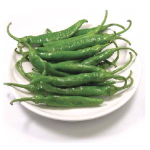 ◆冷蔵◆生青唐辛子「辛口」500g■韓国食品■ 0625