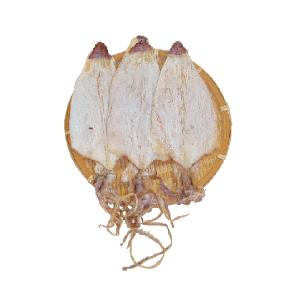 韓国産するめ「5枚」(ハンチ)■韓国食品■ 1561