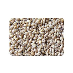 麦500g■韓国食品■ 1704
