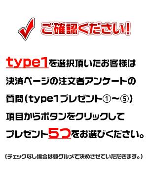 type1-30000