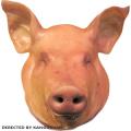 【取り寄せ】▲冷凍▼豚頭(生)■韓国食品■0455