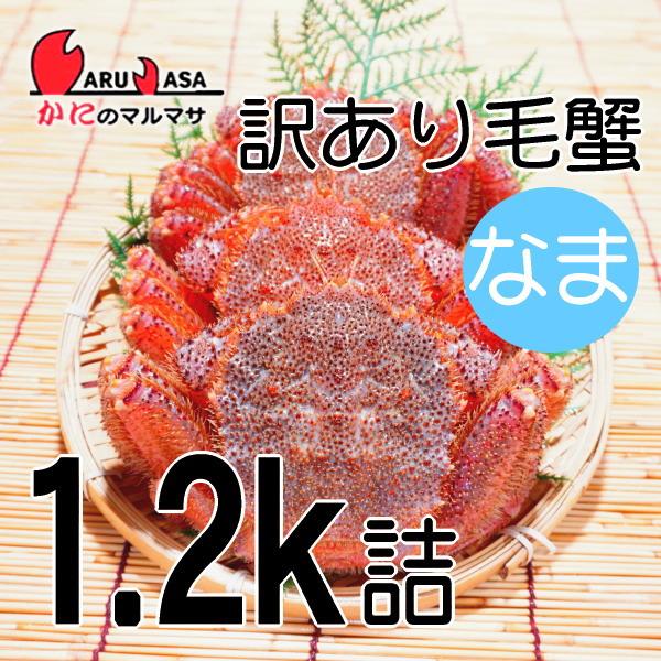 わけあり激安セール[かにのマルマサ]北海道産 訳あり活毛がに1.2kg詰合せ(折れ2-4尾入)活毛蟹専門/お取り寄せ