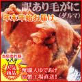 年末年始先行予約 ギフトセット 北海道産 訳ありボイル毛ガニ1kg(1ケース)