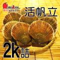 [かにのマルマサ]活ほたて貝2kg[8-12枚]北海道産 活ホタテ[活帆立貝] お取り寄せ ギフト