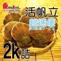 [かにのマルマサ] 活ほたて貝 2kg [8-12枚] 北海道産 活ホタテ [活帆立貝] 超速便 お取り寄せ ギフト