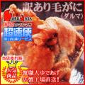 わけあり激安セール[かにのマルマサ]北海道産 訳あり[ボイル]毛がに1kg(折れダルマ2-3尾)詰合せ 活毛蟹専門/超速便