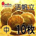 [かにのマルマサ] 活ほたて貝 [中] 10枚セット 北海道産 活ホタテ [活帆立貝] お取り寄せ ギフト