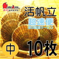 [かにのマルマサ] 活ほたて貝 [中] 10枚セット 北海道産 活ホタテ [活帆立貝] 超速便 お取り寄せ ギフト