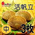 [かにのマルマサ] 活ほたて貝 [中] 3枚セット 北海道産 活ホタテ [活帆立貝] お取り寄せ ギフト