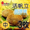 [かにのマルマサ] 活ほたて貝 [中] 3枚セット 北海道産 活ホタテ [活帆立貝] 超速便 お取り寄せ ギフト