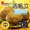[かにのマルマサ] 活ほたて貝 [中] 5枚セット 北海道産 活ホタテ [活帆立貝] 超速便 お取り寄せ ギフト