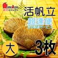 [かにのマルマサ] 活ほたて貝 [大] 3枚セット 北海道産 活ホタテ [活帆立貝] 超速便 贈り物 ギフト