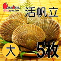[かにのマルマサ]活ほたて貝 [大] 5枚セット 北海道産 活ホタテ[活帆立貝] お取り寄せ ギフト