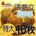 [かにのマルマサ] 活ほたて貝 [特大] 10枚セット 北海道産 活ホタテ [活帆立貝] 超速便 お取り寄せ ギフト