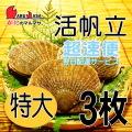 [かにのマルマサ]活ほたて貝 [特大] 3枚セット 北海道産 活ホタテ [活帆立貝] 超速便 贈り物 ギフト