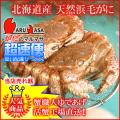 [かにのマルマサ]北海道産 [活]毛がに[350g 2尾] 活毛蟹専門店/毛ガニお取り寄せ/超速便