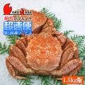 [かにのマルマサ]北海道産 ボイル毛がに[1.5kg詰合せ(2尾入り)] 活毛蟹専門店/毛ガニお取り寄せ/超速便