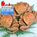 [かにのマルマサ]北海道産 [ボイル]毛がに[500g 3尾] 活毛蟹専門店/毛ガニお取り寄せ/超速便
