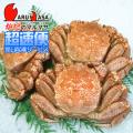 [かにのマルマサ]北海道産 [ボイル]毛がに[600g 3尾] 活毛蟹専門店/毛ガニお取り寄せ/超速便