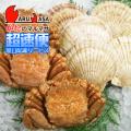 [かにのマルマサ]北海道直送 ボイル毛がに[350g 3尾]・活ほたて貝1.2kg[海鮮Fセット・ボイル]/活毛蟹専門店/超速便