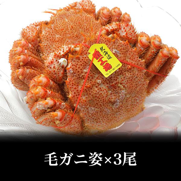 【冷凍】毛ガニ姿 500g前後×3尾